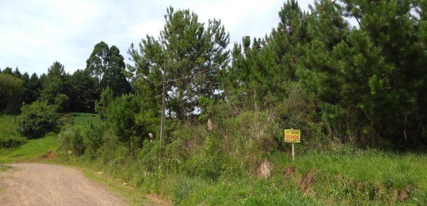 Terreno em Mato Preto – São Bento do Sul