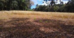Terreno em Centenário – São Bento do Sul